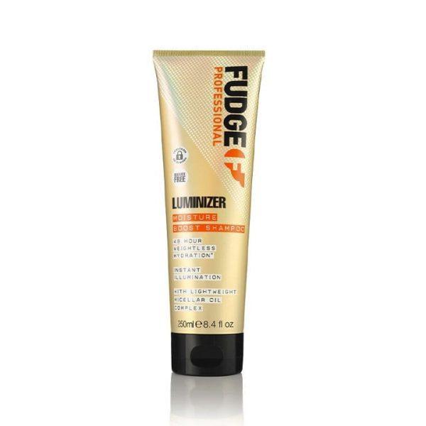 Fudge Luminizer Shampoo